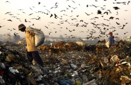INDIA-WASTE-ENVIRONMENT-HEALTH-LABOUR